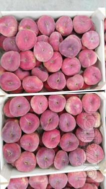 Sell Paraguayan peaches from Spain