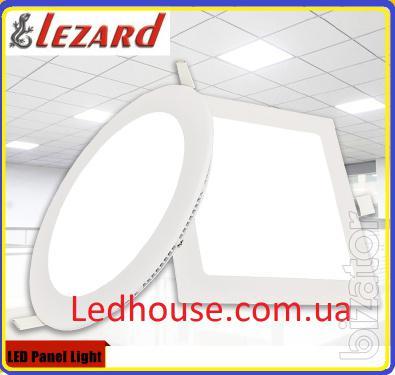 LED LED lights lezard