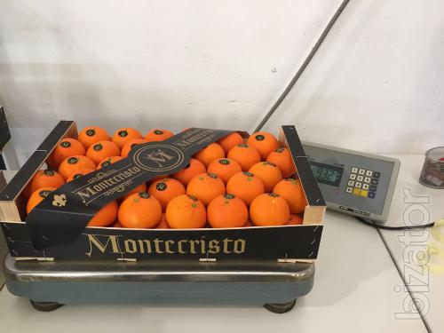 Sell tangerines from Spain