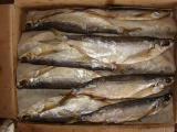 Dried fish wholesale 21 name.