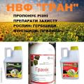 Herbicide Impreza (the analogue of the preparation of Euro-lightning)