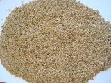 """Sell pumpkin seeds of variety """"Bulgarian"""" (""""Lady's nail"""") in the amount of 8 tons. Sell seeds of flax, Kanarek 60 tone. Pickup/delivery"""