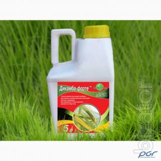 Pre-emergence herbicides, Acetochlor, Prometryn