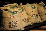 Jute bags of green coffee for decoration and for gosnuzhd.