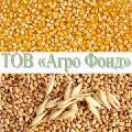 The 2018 harvest to Buy maize, wet kukurudza