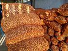 sell walnut