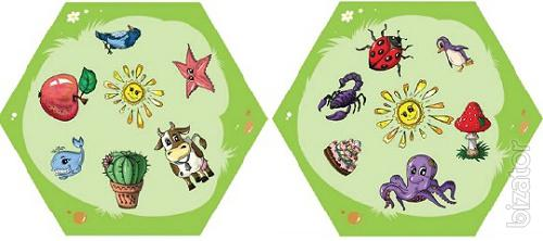 Educational games for children from 4 years. Play with your family!