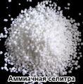 Sell ammonium nitrate