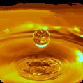 Buy oil nerafinirovannoye 1 increase in bulk from 22T