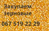 Buy grains, legumes, oilseeds