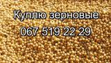 Buy wholesale oil seeds, cereals, legumes (soy, rapeseed, barley, corn, seed, wheat)