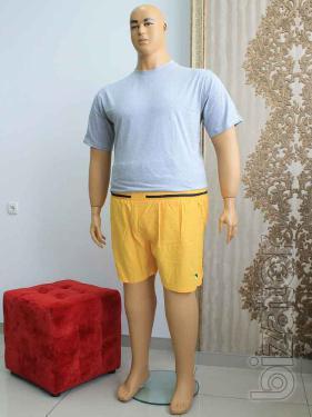 Shorts swimwear (for swimming), men's large size
