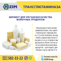Transglutaminase - Enzyme for cheese, cheese and dairy products