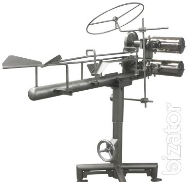 Equipment for slaughtering birds with a double saw