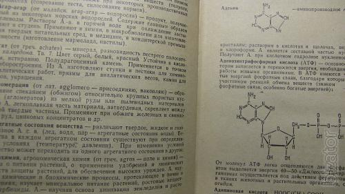 Definitions, concepts, terms in chemistry. Alexey Busev, Igor Efimov