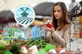 Suppliers of food products on the website ProdGoroda.ru
