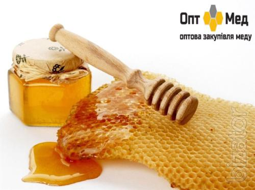 Buy honey in Kirovograd region.