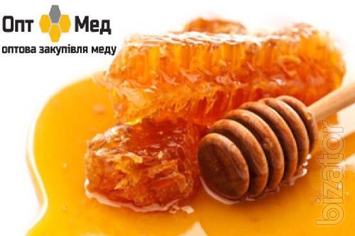 We buy honey from 300 kg in the Cherkasy region.