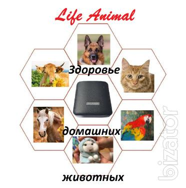 Care for animals at home device Life Animal. Parasitic and other programs.