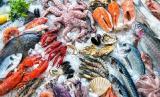 Luggage storage seafood