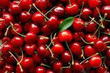 Purchase black cherry (fruits and vegetables) in Ukraine on Poland