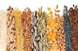 Sell grain for export