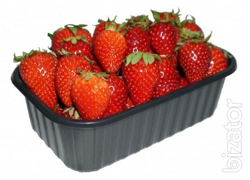 Baby's booty the container tray of strawberries raspberries blueberries vegetables fruits