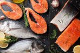 Sell wholesale moreprodukti (salmon, trout, perch, Dorado)