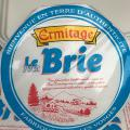 Cheese with white mold Mini brie Ermitage