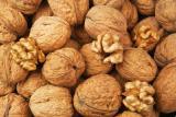 Buy walnut. Walnut purchase wholesale.