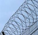 "Barbed wire ""Egoza"""