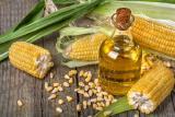 Corn oil wholesale