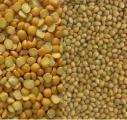 Buy millet. Buy peas