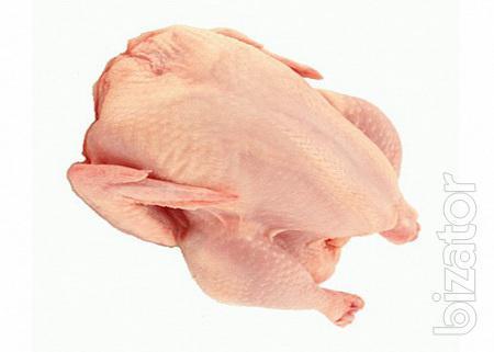 Мясо цыплыт бройлеров