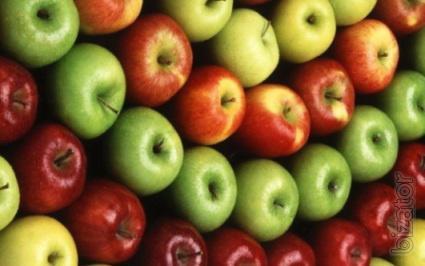 Продаем высококачественные сорта яблок выращенные в Беларуси