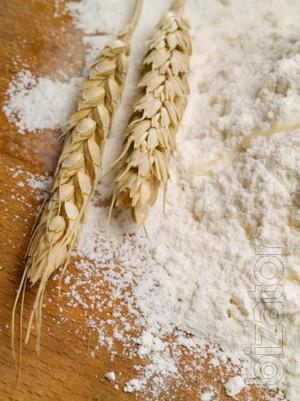 Wheat flour of the highest grade from a warehouse in MSC