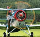 Fighting caterpillar meadow moth aircraft An-2