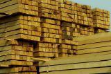 Timber oak buy in Krasnodar