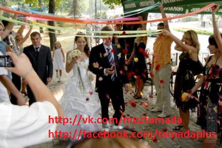 Тамада, живая музыка, дискотека со своей аппаратурой на свадьбу. Киев.
