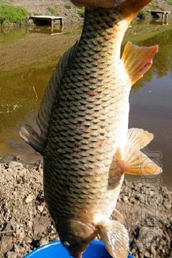 Отдых в Крыму, рыбалка на горном озере