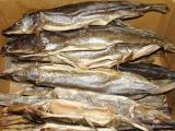 Dried pike wholesale