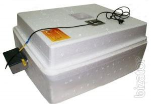 Incubator digital from the manufacturer