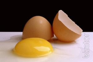 Most high-quality and not expensive, chicken egg