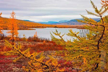 Охотничьи туры, рыболовные туры в Сибирь
