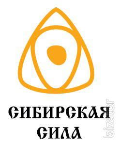 "Internet supermarket ""Siberian power"""