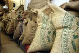 Оптовая продажа органического кофе для вашего бизнеса.