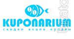 Coupon website KUPONARIUM