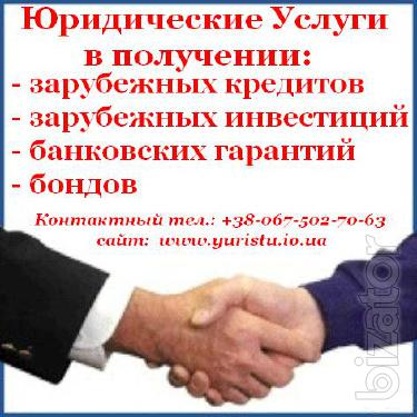 Foreign Loans for the development and purchase of legal and physical persons.......................................................