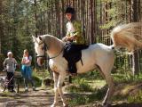 Верховая езда для взрослых и детей в Вырице