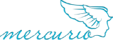 Интернет магазин сумок MERCURIO